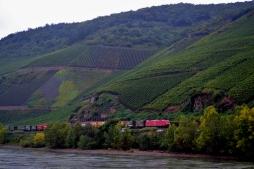 vineyards in Germany